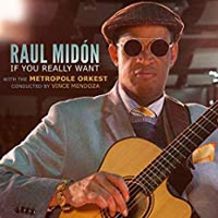 Raul Midon If You Really Want